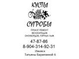 Логотип КустыСугробы